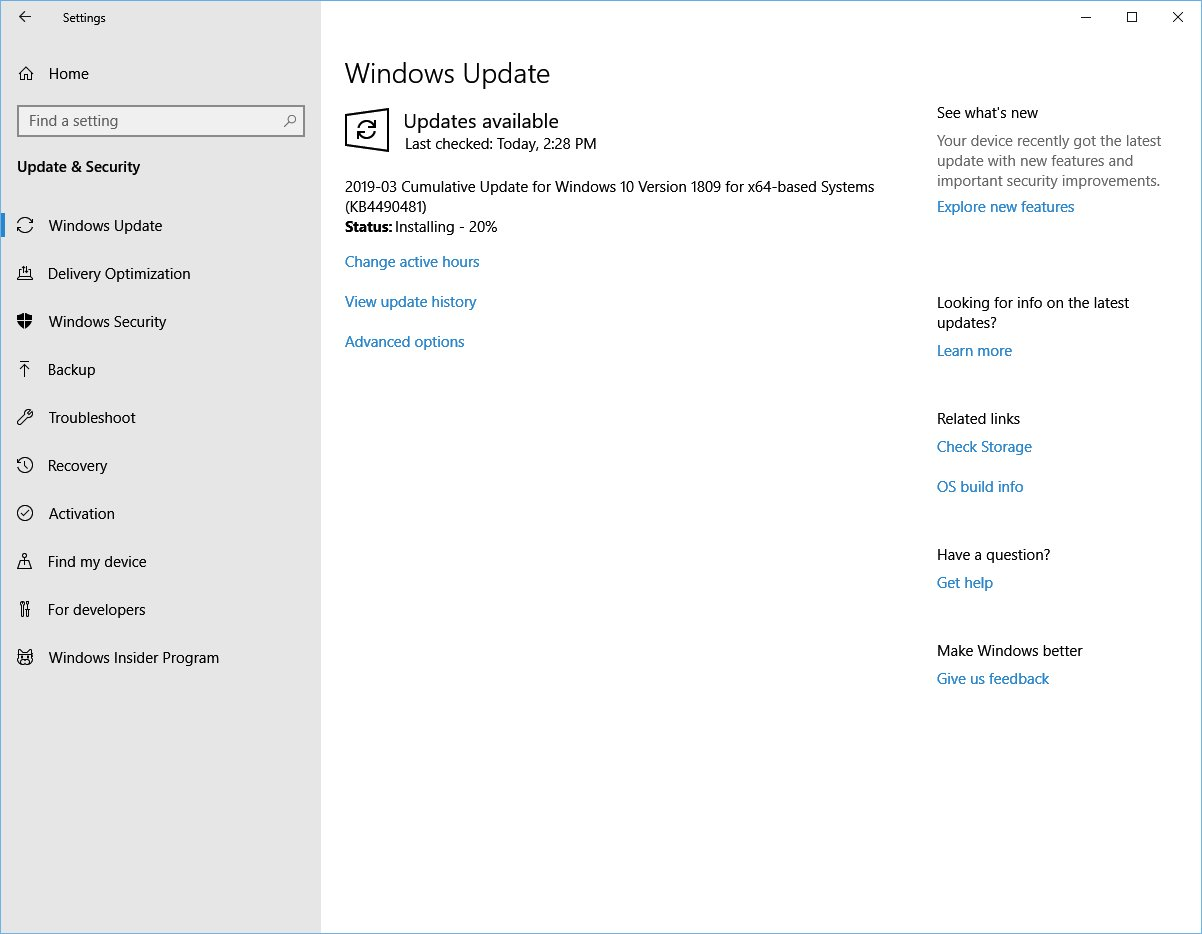 Windows 10 1809 KB4490481 rolling out with multiple fixes