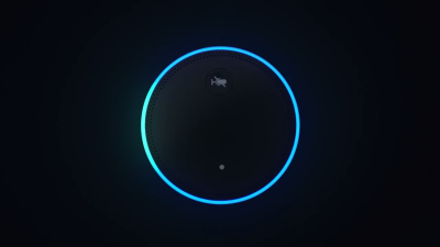 How to delete your Amazon Echo recordings