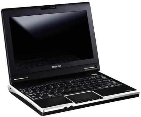 Toshiba NB100 Windows