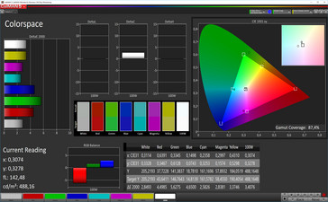 CalMAN color space (sRGB color space), standard display mode