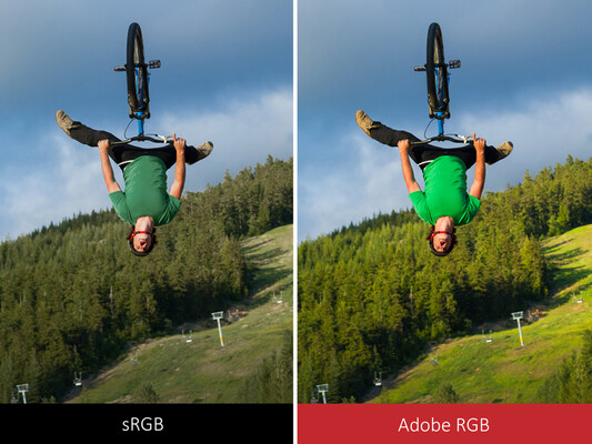 Adobe RGB can display more saturated colors than sRGB. (Source: ViewSonic)