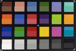 ColorChecker; reference color in lower part of each square.