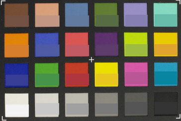 ColorChecker Passport: Target colors are displayed in the lower half of each patch (RGB  and monochrome sensor).