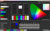 CalMan color space (profile: Warm, color space target: sRGB)