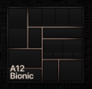 Apple A12X Bionic GPU