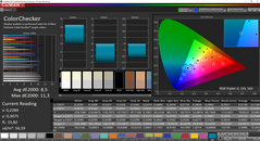 CalMAN ColorChecker (uncalibrated, TrueColor Vibrant)