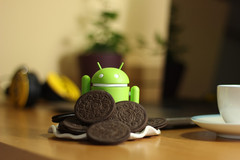 Android Oreo has new APIs which help remove developers reliance on accessibility permissions. (Source: knd61/Pixabay)