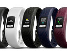 Garmin Vivofit 4 activity tracker (Source: Garmin)