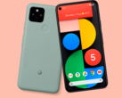 The Pixel 5 blends the design of the Pixel 4 with the Pixel 4a. (Image source: Evan Blass)