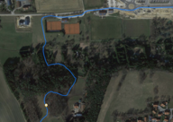 GPS Test: Forest section