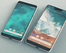 The Pixel 3 and Pixel 3 XL. (Source: Daily Express)