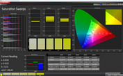 CalMAN Normal Colors Saturation sRGB