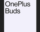 Some official OnePlus Buds branding. (Source: Twitter)
