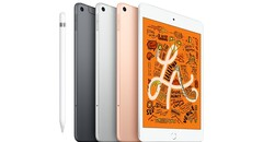 The next iPad Mini may look very different. (Source: Apple)