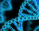 Microsoft Research and UW have demonstrated automated data archival and retrieval in a DNA molecule. (Source: The Conversation)