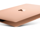 The 12-inch MacBook only scores a fresh coat of paint. (Source: Apple)