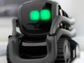Anki, the company behind cute little robits like Vector has gone out of business. (Source: Anki)
