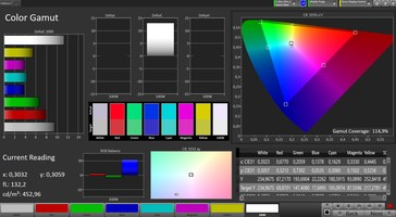 CalMAN: Colour Space – Wide colour gamut profile, AdobeRGB target colour space