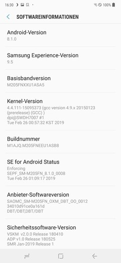 Samsung Galaxy M20: software