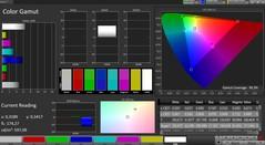 CalMAN color space (profile: Natural; color space: sRGB)