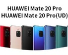 Huawei Mate 20 Pro colors available in China (Source: Vmall)
