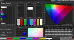 CalMAN color space (profile: Lively; color space: sRGB)