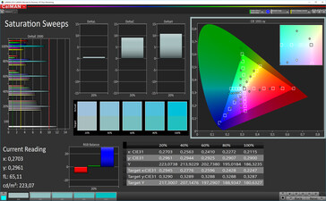 Saturation (sRGB target color space)
