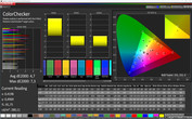 "Profile ""Basic"": CalMAN ColorChecker sRGB"