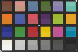 ColorChecker Passport: The actual colors are displayed in the lower half of each patch.