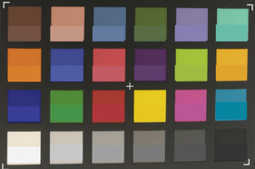 ColorChecker Passport: The reference color is in the lower field
