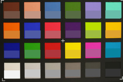 ColorChecker Passport: The target color is displayed in the lower part of each patch