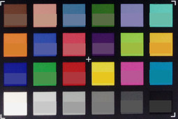 Picture of the ColorChecker chart. The lower half shows the respective reference color.