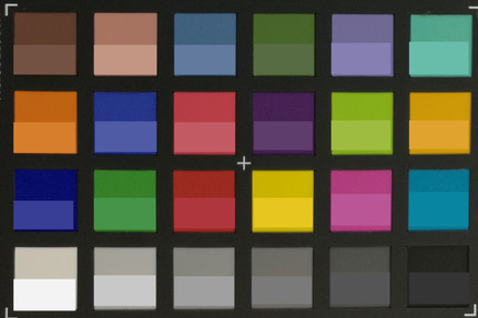 Screenshot of ColorChecker colors: Original colors are displayed in the lower half of every field.