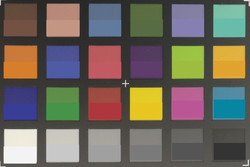 ColorChecker Passport: The target colors are displayed in the lower half of each patch.