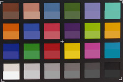 Screenshot of ColorChecker colors. The original colors are displayed in the lower half of each patch.