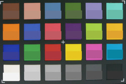 ColorChecker Passport: The actual color is displayed in the lower half of each patch.