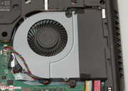 You can remove the fan if you want to clean it.