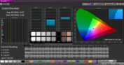 CalMAN ColorChecker with our calibration