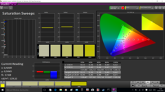 CalMAN Saturation Sweeps calibrated (target color space sRGB)