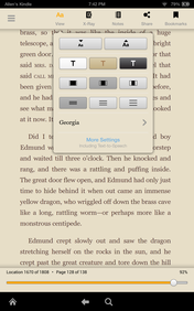 the Kindle's simple eReader and support for eBooks are still its key features