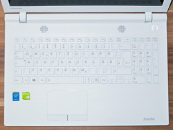Input devices C55-C-1NE