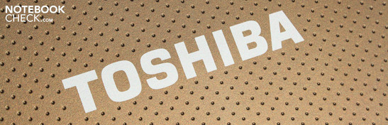 Toshiba NB520-108 brown: Dual-core netbook with subwoofer acoustics.