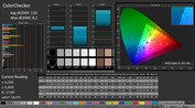 CalMAN: ColorChecker (after calibration)