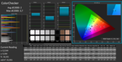 CalMAN ColorChecker: perfect sRGB colors