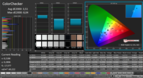 CalMAN - ColorChecker (calibrated)
