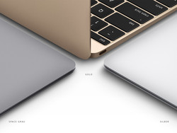 Spoiled for choice: Space gray, gold or silver