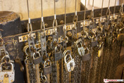 Canon 450D (no flash, ISO 800)