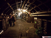 Galaxy S4 (no flash)