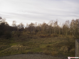 Nokia Lumia 1520 (original, reddish cast)