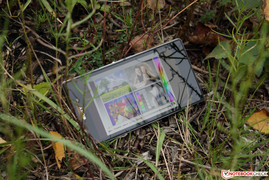The Sony Xperia Z1 outdoors.